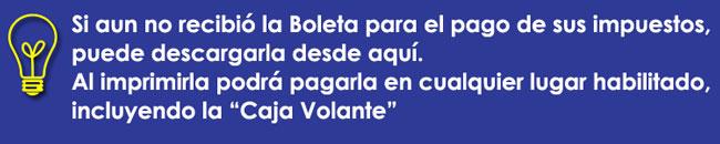 boleta_web