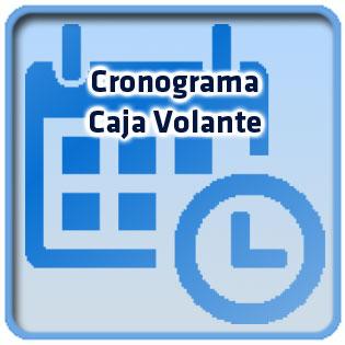 crono_volante