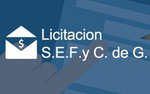 Licitación Pública N° 4 Nº 04/2018-S.E.F. y C. de G.