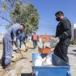 Municipio recupera y embellece boulevares de la ciudad