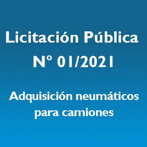 Licitación Pública N° 01/2021 – S.E.F. y C. de G.